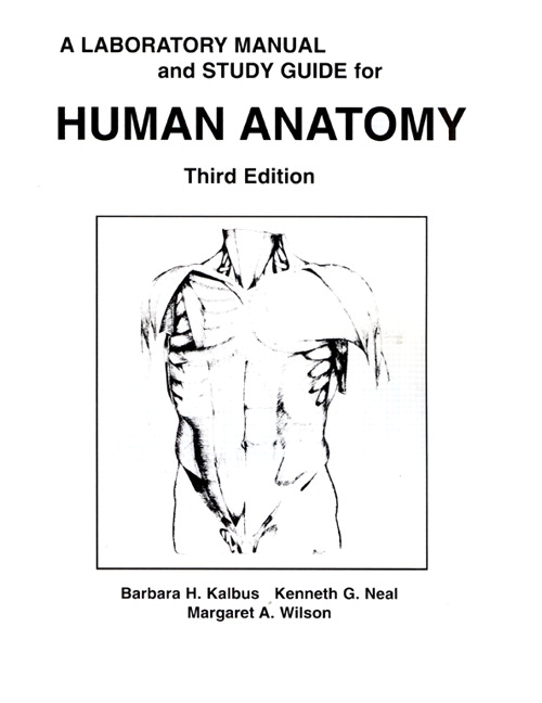 Brain Anatomy Internal Structures Manual Guide