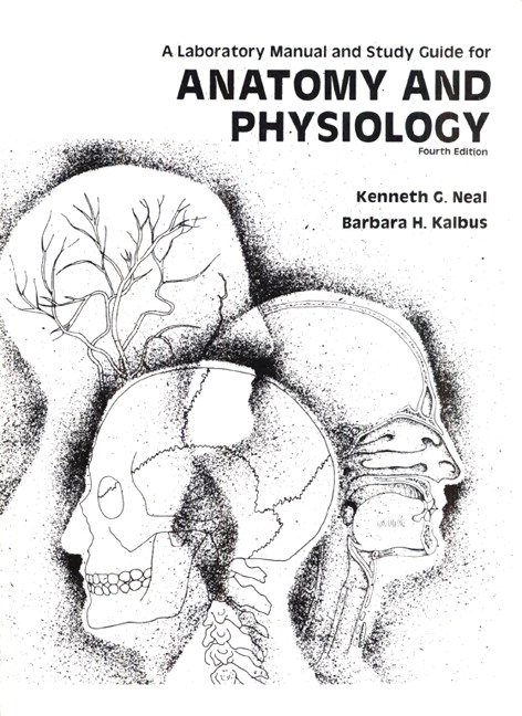 Bone Structure U00b7 Anatomy And Physiology Manual Guide