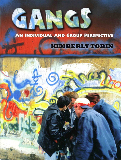 sociological perspective on gangs