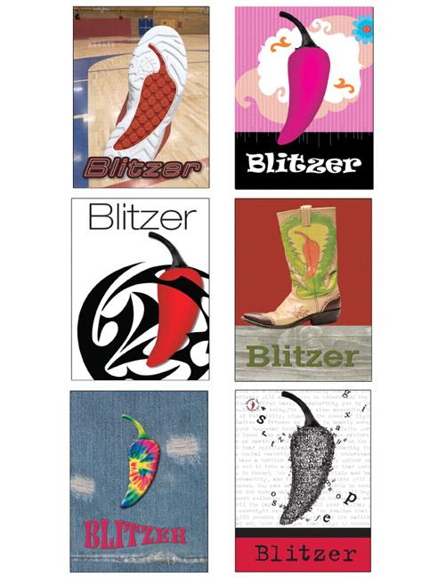 Precalculus Textbook Blitzer