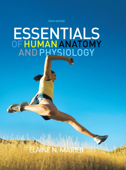 Marieb Essentials Of Human Anatomy And Physiology Nasta Edition