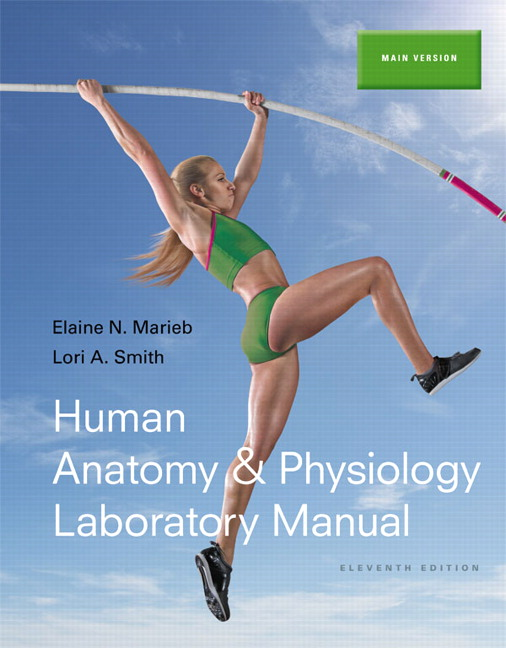 Marieb & Smith, Human Anatomy & Physiology Laboratory Manual, Main ...