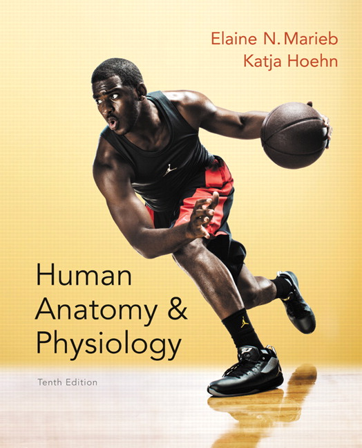 Marieb & Hoehn, Human Anatomy & Physiology, 10th Edition