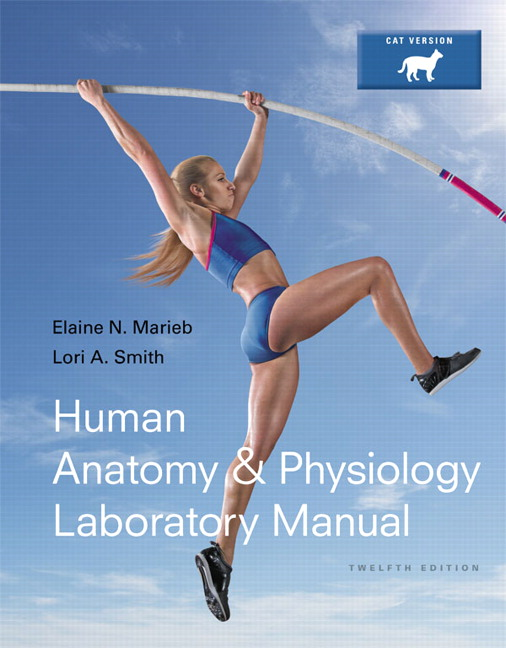 Marieb & Smith, Human Anatomy & Physiology Laboratory Manual, Cat ...