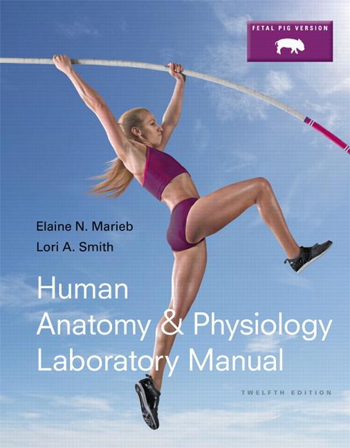 Marieb Smith Human Anatomy Physiology Laboratory Manual Fetal