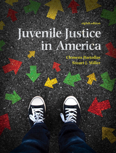 The Juvenile Justice System Delinquency Processing and the Law 8th Edition
