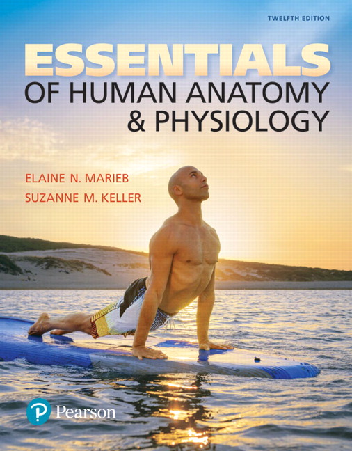 Marieb & Keller, Essentials of Human Anatomy & Physiology, 12th ...