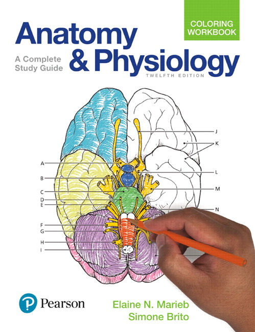 Marieb & Brito, Anatomy and Physiology Coloring Workbook: A Complete ...