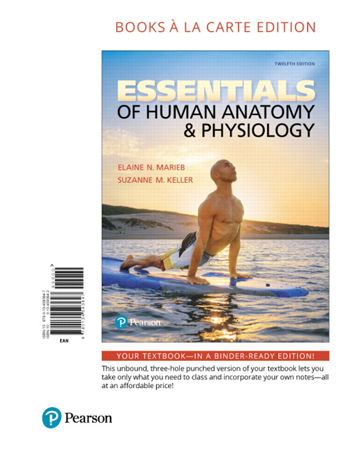 Marieb Keller Essentials Of Human Anatomy Physiology Books A