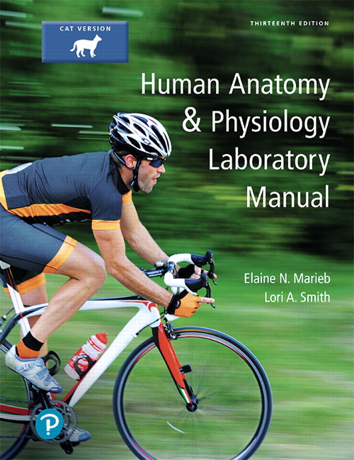 Marieb smith human anatomy physiology laboratory manual cat human anatomy physiology laboratory manual cat version 13th edition fandeluxe Gallery