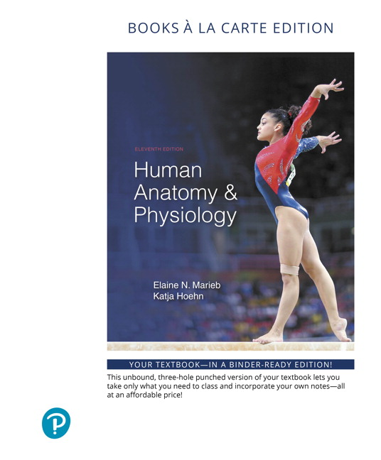 Marieb hoehn human anatomy physiology 11th edition pearson human anatomy physiology books a la carte edition 11th edition fandeluxe Images