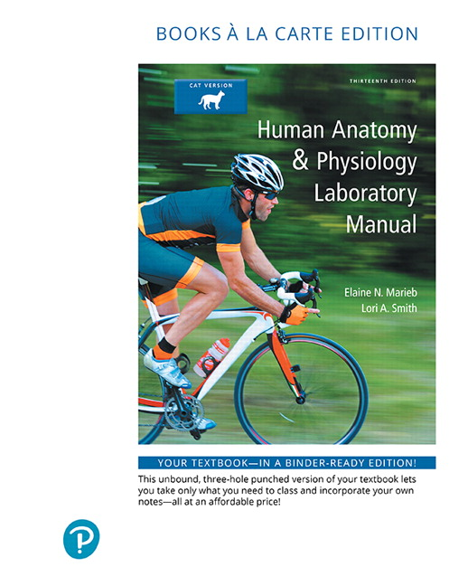 Marieb & Smith, Human Anatomy & Physiology Laboratory Manual, Fetal ...