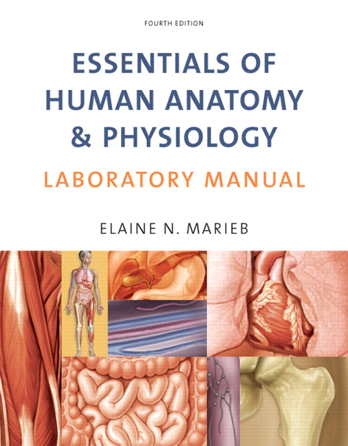 Marieb Essentials Of Human Anatomy Physiology Laboratory Manual