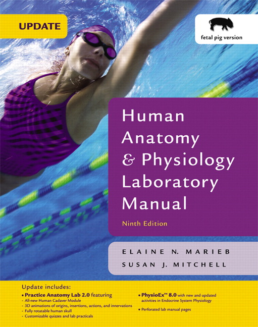 Marieb mitchell human anatomy physiology lab manual fetal pig human anatomy physiology laboratory manual with physioex 80 fetal pig version update 9th edition marieb mitchell fandeluxe Images