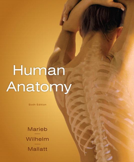 Marieb Wilhelm Mallatt Human Anatomy Media Update 6th Edition