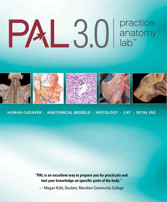 Heisler, Hebert, Chinn, Krabbenhoft & Malakhova, Practice Anatomy ...