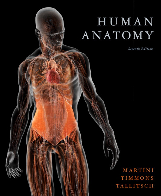 Martini Timmons Tallitsch Human Anatomy Pearson