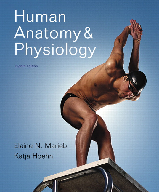Marieb Hoehn Human Anatomy Physiology Plus Mastering Ap With