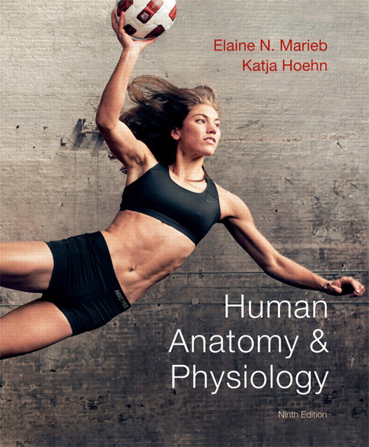 marieb hoehn human anatomy physiology 9th edition pearson