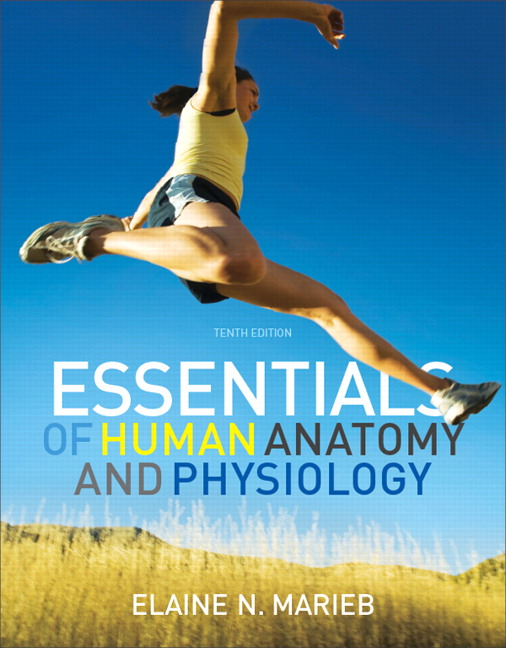 Marieb Essentials Of Human Anatomy Physiology 10th Edition Pearson