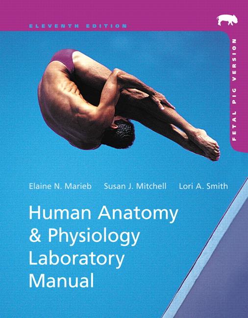 Marieb & Smith, Human Anatomy & Physiology Laboratory Manual, Fetal ...