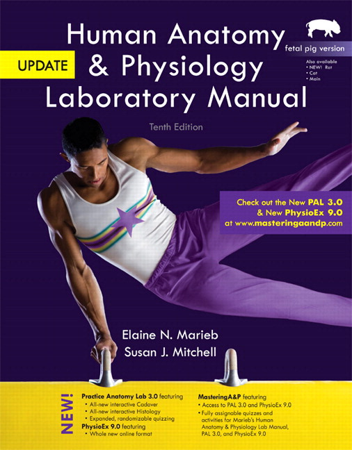 Marieb & Mitchell, Human Anatomy & Physiology Laboratory Manual ...