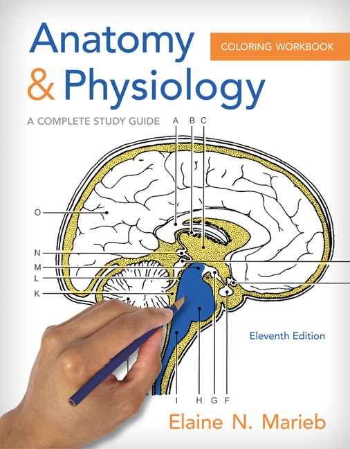 Marieb & Brito, Anatomy and Physiology Coloring Workbook: A Complete Study Guide Pearson