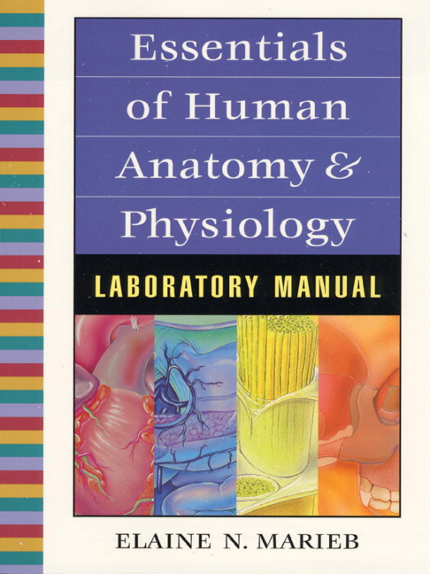 lab 5 human anatomy physiology Instructor guide essentials of human anatomy & physiology laboratory manual fifth edition elaine n marieb, rn, phd holyoke community college this instructor guide.