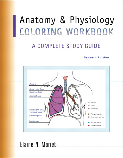 Anatomy Physiology Coloring Workbook A Complete Study Guide 7th Edition Marieb