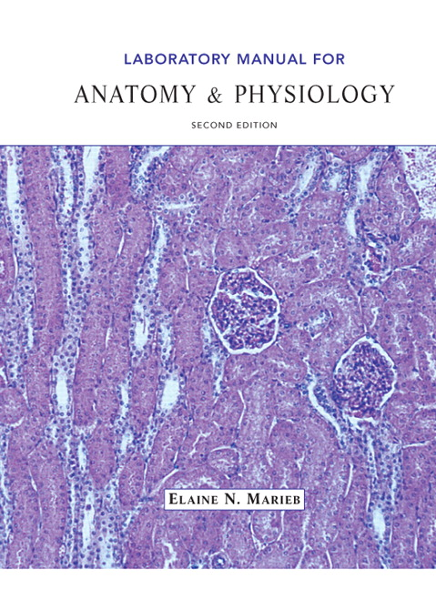 Anatomy and physiology lab manual coursework service anatomy and physiology lab manual laboratory manual for anatomy and physiology 5th edition ebook 1 1 human fandeluxe Image collections