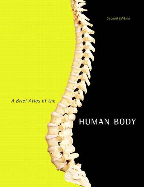 Hutchinson, Mallatt, Marieb & Wilhelm, Brief Atlas of the Human Body ...