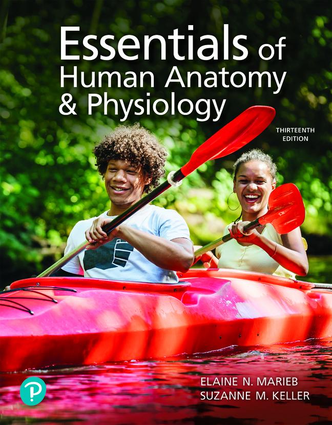 Essentials of Human Anatomy & Physiology, 13th Edition