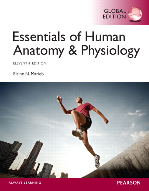 Essentials of Human Anatomy & Physiology, Global Edition, 11th Edition